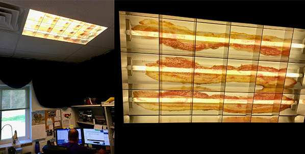 Bacon Designscape Light Filter in Use in an office