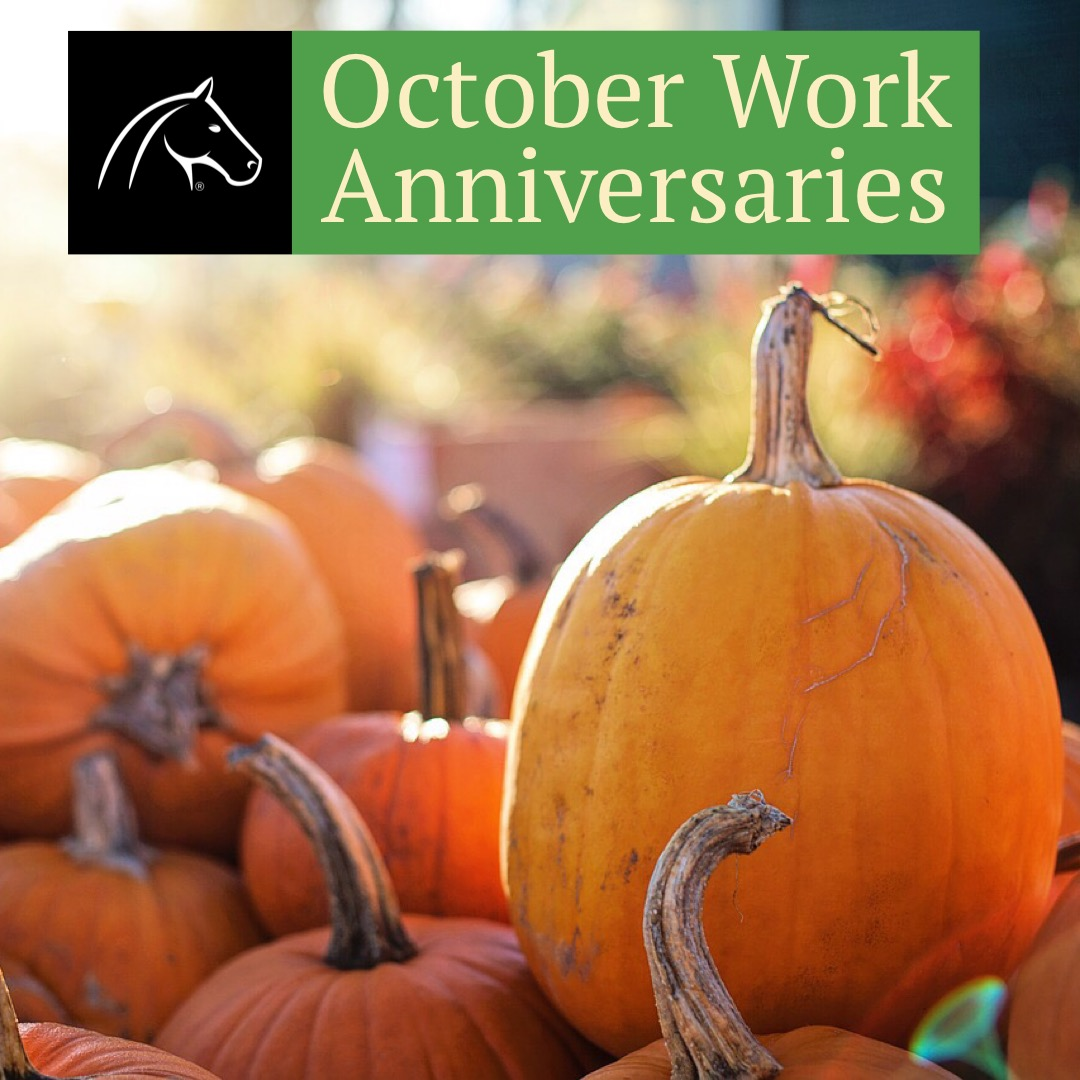 2018 October Work Anniversaries