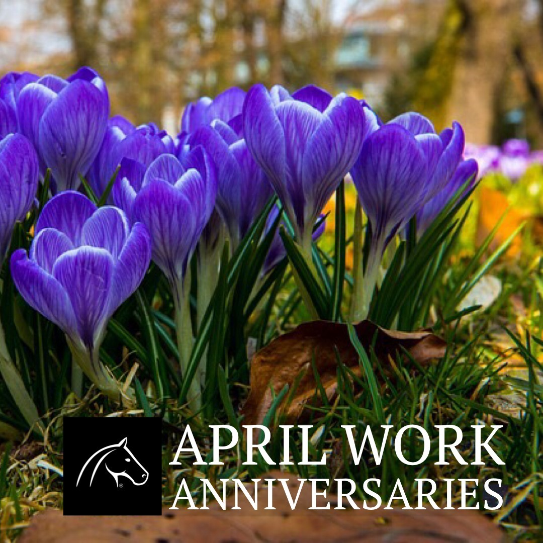 April Anniversaries 2019