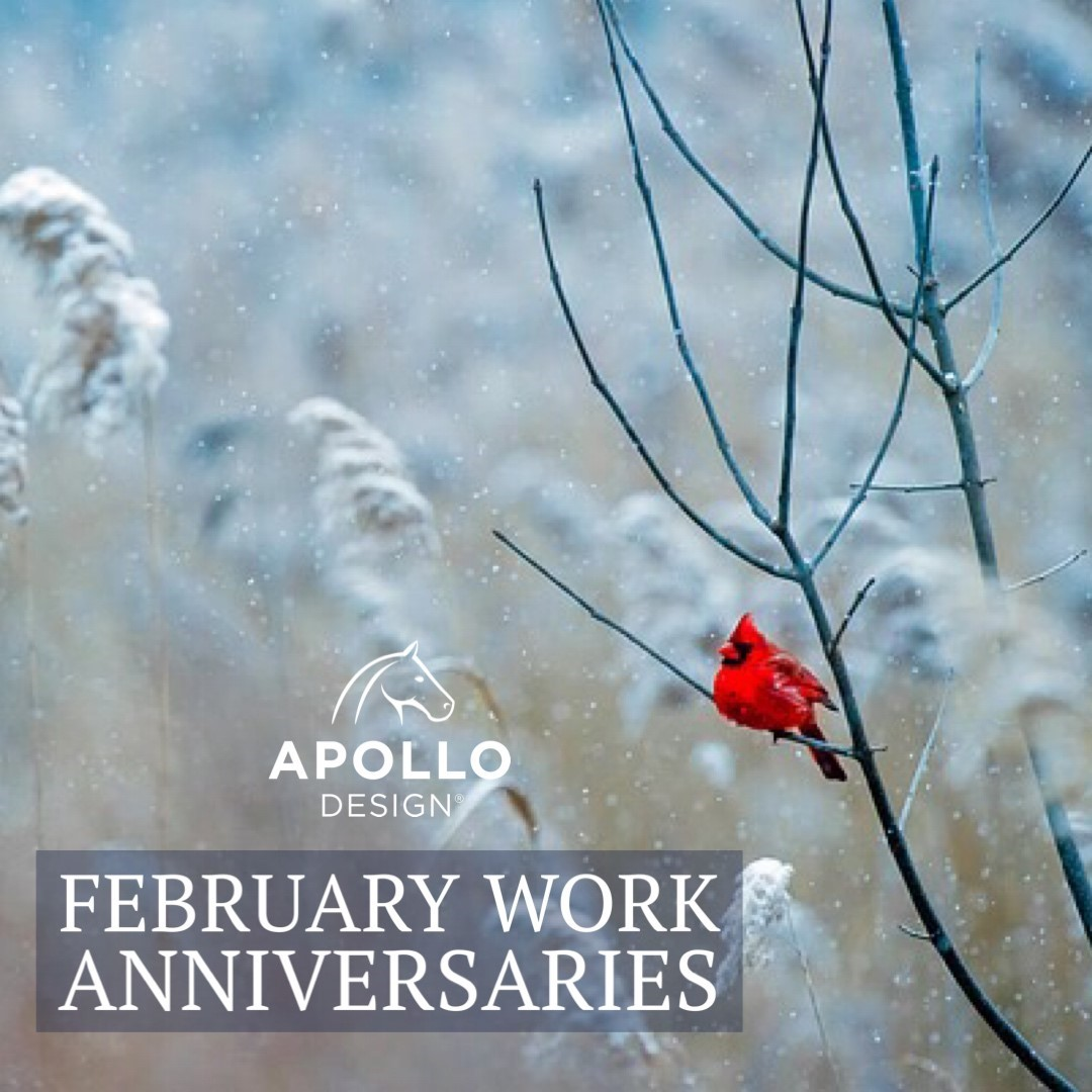 February Work Anniversaries