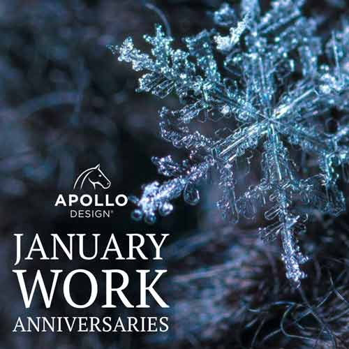 January 2019 Apollo Work Anniverstaries