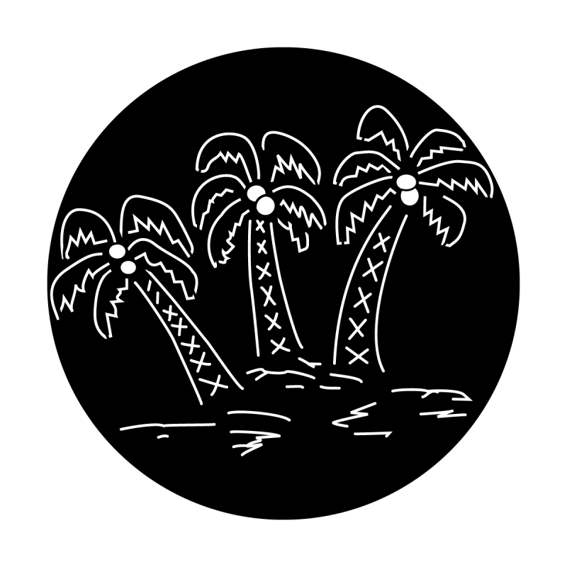 Trees - Palm